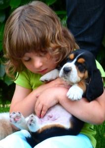 Basset Hound in casa - puppy basset e bimba